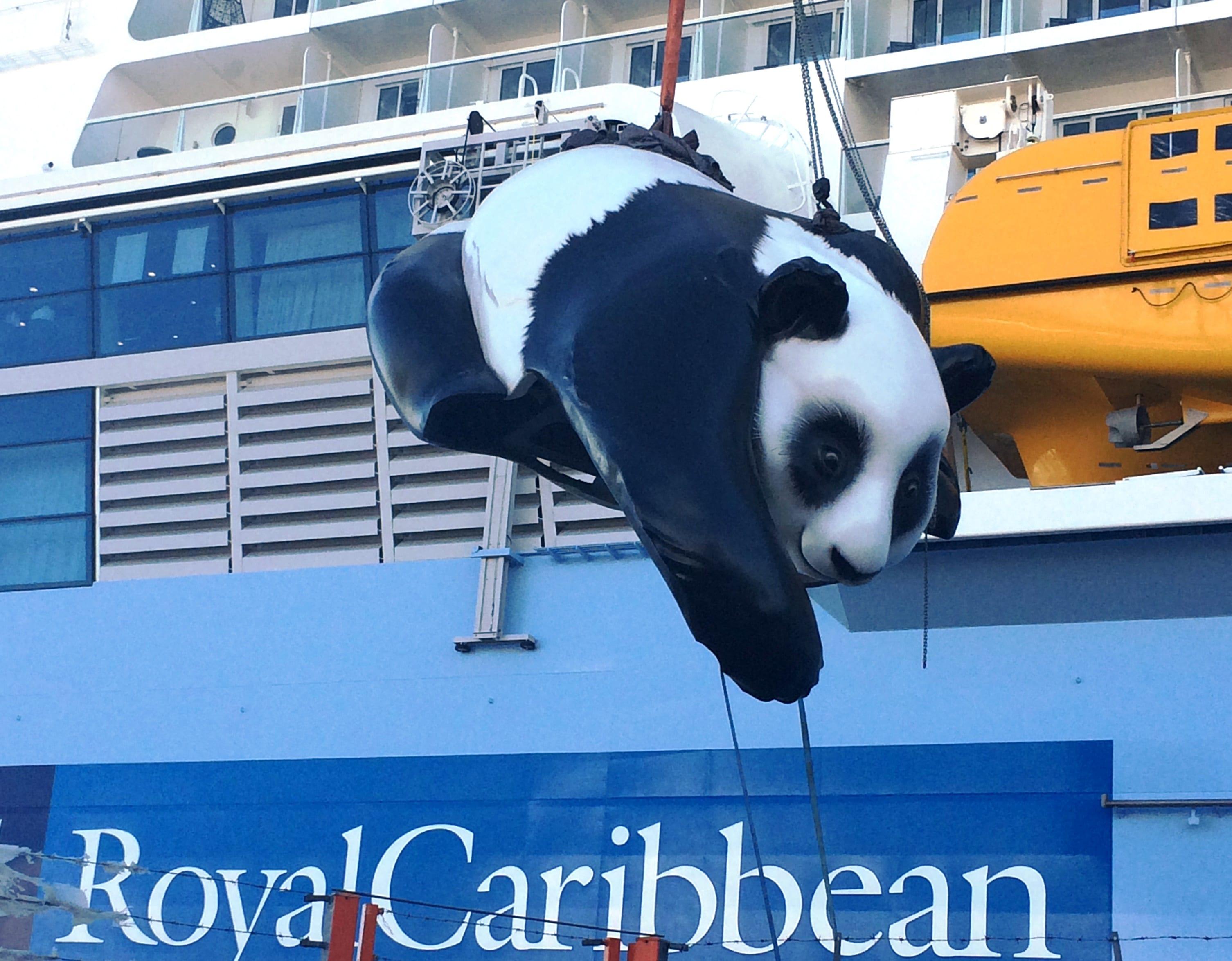 Ovation Panda